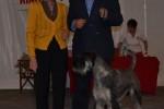 13-Int. di Montecarlo-27.04.2012-CAC, CACIB, BOB-giudice M.me L. Mach