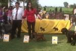 16-CIS&P campionato Sociale di Massenzatico-24.06.2012 Kennedy e Xelene miglior coppia assoluta-giudice sig. A.Probst(DE)