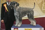 24-Top-Dog-2012-KENNEDY