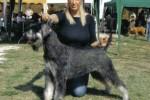 05-Esposizione Internazionale di San Marino - 2007