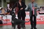 11-Int. di Sanremo-29.04.2012 Karisma BOB-giudice sig. V. Nataletti