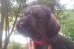 01-Greta 2 mesi