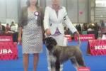 22-Europa iunior winner Greta 2014