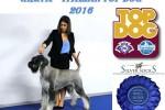 33-Greta TOP DOG 2016