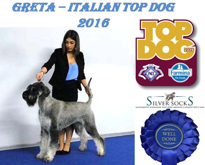 GRETA ITALIAN TOP DOG 2016