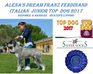 FRANZ FERDINAND  Italian Jr Top Dog  2017