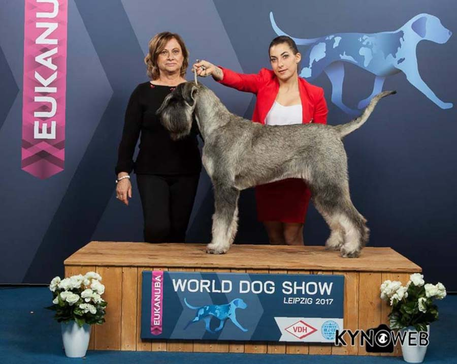 GRETA World Dog Show in Leipzig